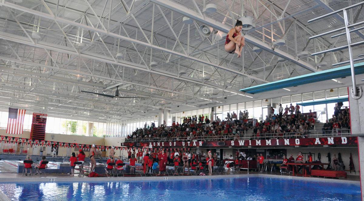 Utah Athletics Swimming Amp Diving